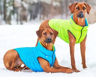 Куртки AiryVest для собак