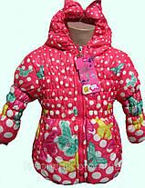 Куртка демисезонная 1-2 года, фото 2