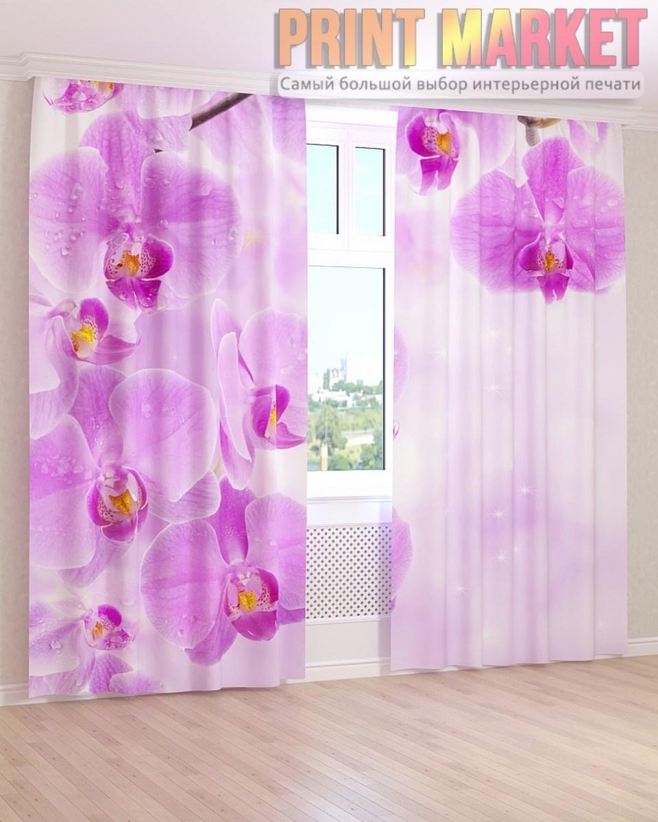 Фото шторы нежно фиолетовая орхидея 3д