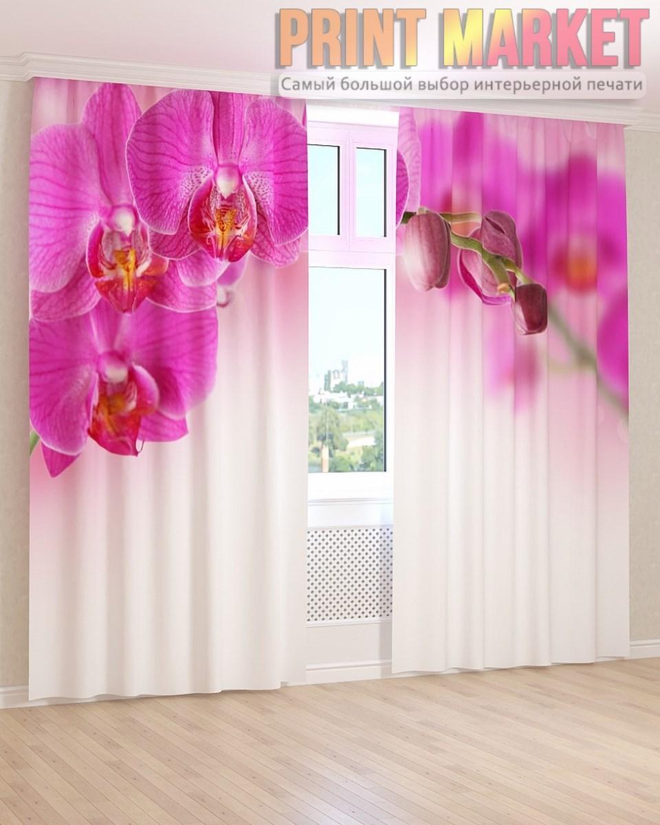 Фото шторы темно-розовая орхидея