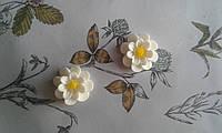 Кабошон - біла квітка