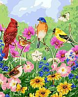 7529c0bef2bfe Раскраска по номерам без коробки Экзотические птички (BK-GX5537) 40 х 50 см