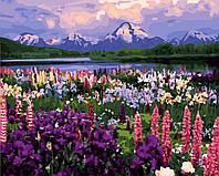 Раскраска по цифрам Долина полевых цветов (BRM21019) 40 х 50 см