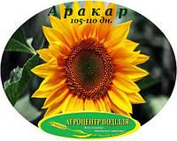 Семена подсолнечника Аракар 105-110 дн. под Евро Лайтинг