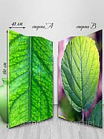 Ширма тканевая, двусторонняя, Высокая, Зеленые листы