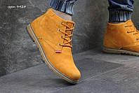 Чоловічі зимові черевики  Levis гірчичні  (3424)