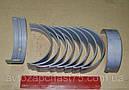 Вкладыши Камаз (Димитровоградский завод вкладышей) комплект шатунные+ коренные, фото 2