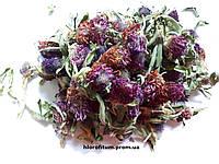 Клевер луговой (Trifolium pratense), цветки 100 грамм