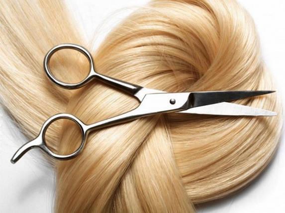 Покупка волос в Александрии, фото 2