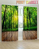 Фото шторы зеленый лес