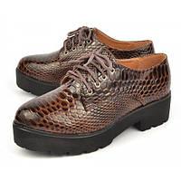 Ботинки (криперсы) женские лаковые демисезонные на тракторной подошве «Gala», Коричневый, 36