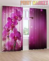Фото шторы большая фиолетовая орхидея 3Д