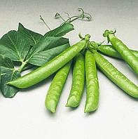 Семена Горох Сомервуд (Фасовка: 100 000 шт)