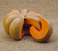 Семена Тыква Мускат де Прованс (Фасовка: 2 г)