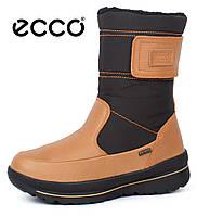 Сапоги женские зимние кожаные Ecco Gore-Tex Terra Brown, Коричневый, 37
