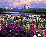 Картина раскраска по номерам без коробки Долина полевых цветов (BK-GX21019) 40 х 50 см