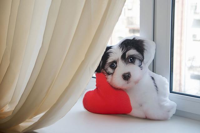 "Декоративная подушка ""Собачка с сердцем"""