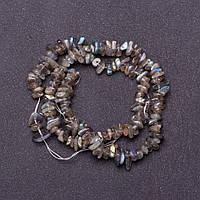Бусины натуральный камень на нитке Лабрадор d-6мм L-37см