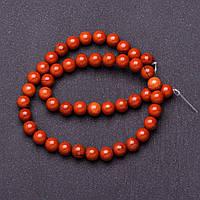 Бусины натуральный камень на нитке Яшма красная d-8мм L-37см