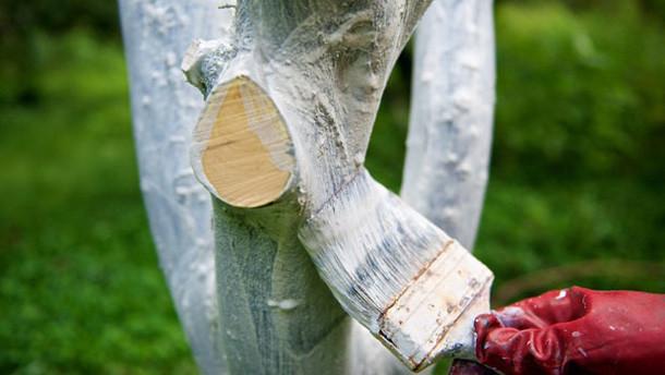 Для деревьев