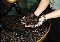 Кофе в зернах обжарка. Кава в зернах