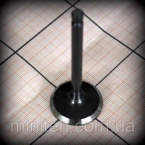 Клапан впускной 177(9л.с.) 04513