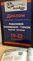 """Осенний фестиваль """"ACTIV EXPO FEST"""" - 2017"""