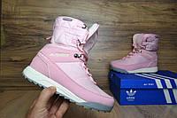Кроссовки женские Adidas Terrex 2 Зимние. Кожа Мех 100% Розовые