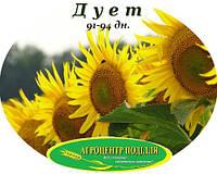 Семена подсолнечника ДУЭТ (Дует) под Евро Лайтинг 92-94 дн. (May Agro Seed) (Турция)