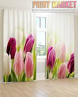 Фото шторы тюльпаны в бутонах