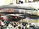 Приводний клиновий ремінь Z(0)-1800 Excellent, 1800 мм, фото 6