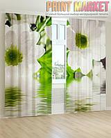 Фото шторы макро белые цветы 3D