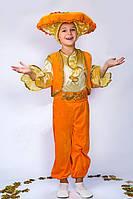 Карнавальный костюм Гриб Лисичка для мальчика