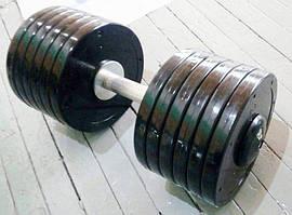 Гантелі професійні нерозбірні Vasil 28 кг