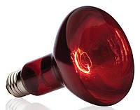Лампа ІКЗК 250Вт червона (мін.відгрузка 1ящ.-15шт) (без обміну) (без перевiрки)