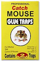 Клеевая ловушка от крыс и мышей размер 20*13.5 2 шт в упаковке (желтая)