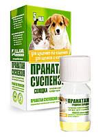 Пранатан суспензия сладкая для щенков и котят, 5 мл, O.L.KAR. (Олкар)