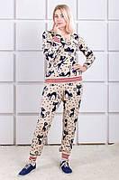 Вязаный спортивный костюм полушерсть Кошки  пудра (42-46)