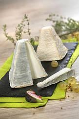 Закваска,фермент + цвіль для сиру Пуліна-Сен-П'єр