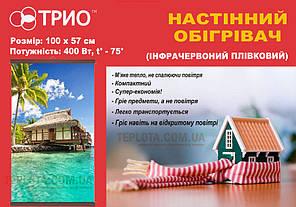 Настенный пленочный обогреватель (картина) НАТЮРМОРТ, Трио Украина, фото 2