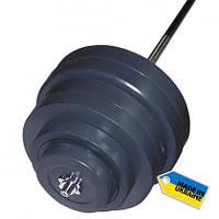 Штанга набірна Newt Rock 122 кг
