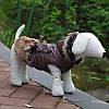 """Куртка, пальто """"С мехом"""" для собак, кошек. Одежда для животных, фото 3"""