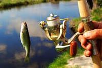 Туризм, відпочинок, спорт, рибалка і полювання