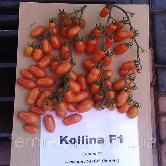 Семена томата Колина  F1 \ Kolina F1 250 семян Esasem