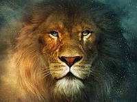 """Набор алмазной мозаики """"Величественный лев"""""""