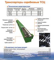 Цепной транспортер ТСЦ Bronto
