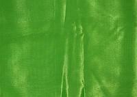 Перл-шифон парижгрин (зеленый) Chrisanne Clover
