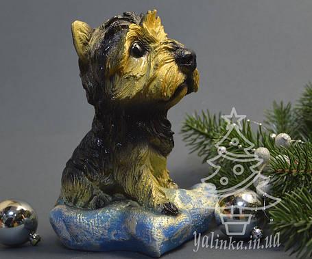 Копилка керамическая Собака на подушке 1754, фото 2