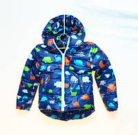 Демисезонная куртка для мальчика, или девочки 2-3 лет