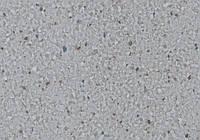 Коммерческий гетерогенный линолеум LG Durable Diorite DU 71831